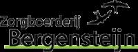 Bergensteijn